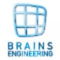 Brains Engineering