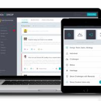 Web Portal Development for Beer Company