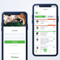 How We Created A Quality Branded Design Of A Mobile App For Felmo And Saved Time