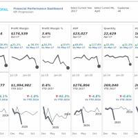 Financial Performance Metrics