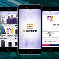DS E-Commerce