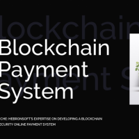 HebronSoft's Expertise on developing a Blockchain security online payment system
