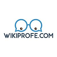 Wikiprofe: Education Startup Helping Students