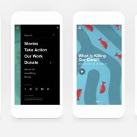 Website Rebrand for Ocean Wise