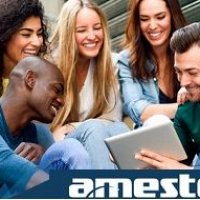 Web Development for Amesto
