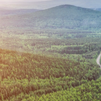 FORESTRY SOFTWARE SOLUTION-FINLAND