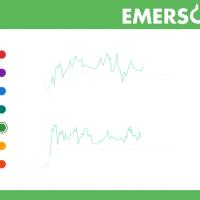 Custom Software Development for Emerson Crane Hire