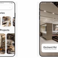 Adex Renovation App Development