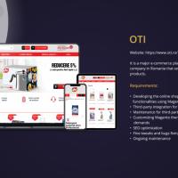 OTI Group - web development services