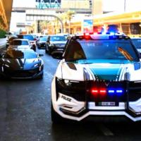 Smart E Police