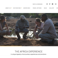 The Africa Experience