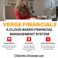 Verge Financials