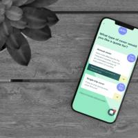Pluto - the Travel Insurance App