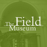 Delivering better UX for the Field Museum