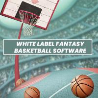 White Label Fantasy Sports Software Development Company