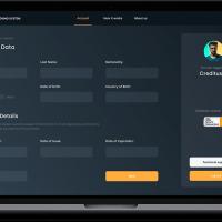 Credit Scoring SaaS App for Financial Organizations