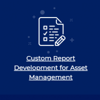 Custom Reports Development - Case Study of One of the Largest Institutional Asset Manager
