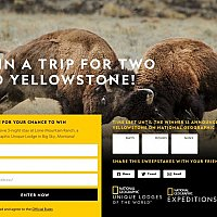 National Geographic – Yellowstone Live Competition