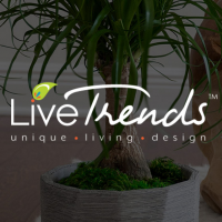 LiveTrends Design - Website Design & Web Application